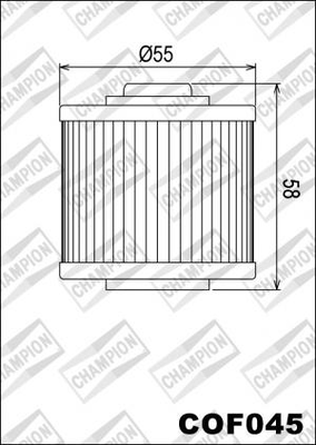CHAMPION OLIEFILTER COF045